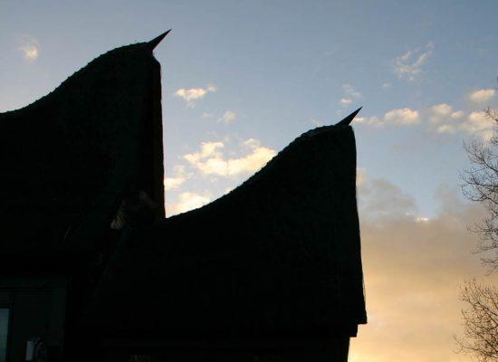 Minang Kabau dak